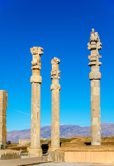 Ancient columns in the gate of all nations - persepolis, iran