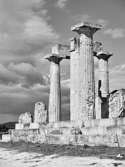 그리스 aegina 섬에 있는 aphaea 사원의 고대 기둥. 흑백 사진
