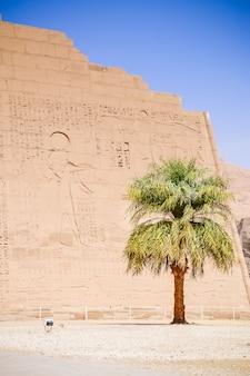 Ancient egyptian hieroglyphs on the walls