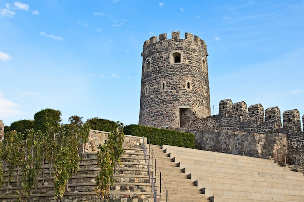 Древняя историческая башня, касающаяся чистого неба в грузии