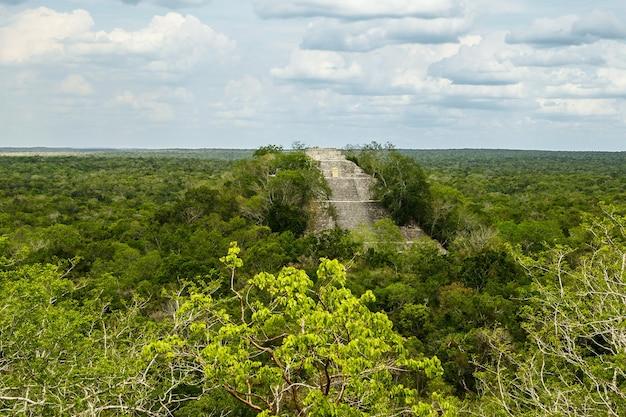 녹색 정글의 고대 마야 피라미드