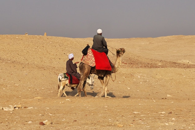 Древняя пирамида саккара в пустыне египта
