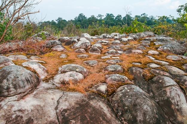 Ancient rock stone mountain landscape
