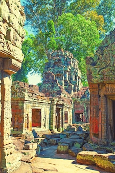 カンボジア、アンコールの寺院の古代遺跡