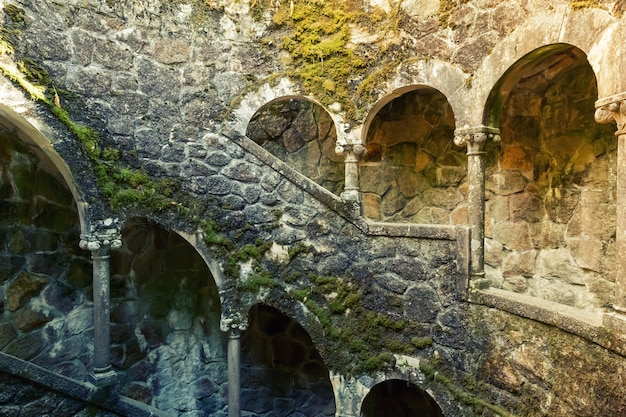 コケのある古代の階段