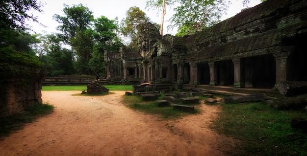 Ancient stone ruins of ta prohm temple, angkor, cambodia