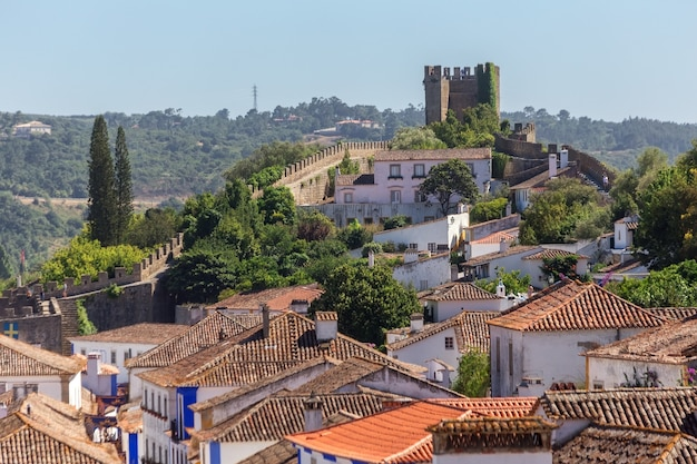 The ancient streets and houses of the portuguese village of obidos.