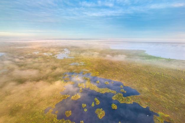 Древнее болото ельня, беларусь - одно из крупнейших верховых болот в европе.