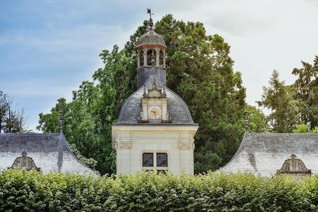Древние башенные часы между листвой в солнечный день