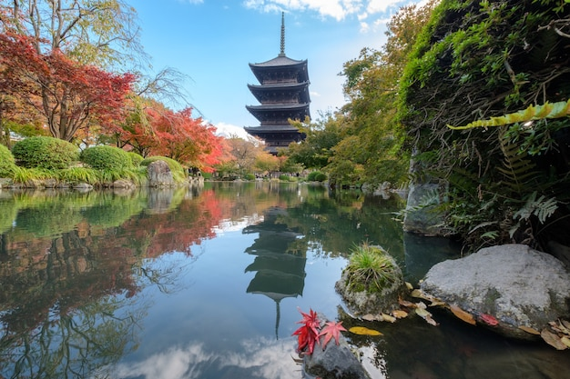 Ancient wood toji temple of unesco world heritage site in autumn leaves garden at kyoto