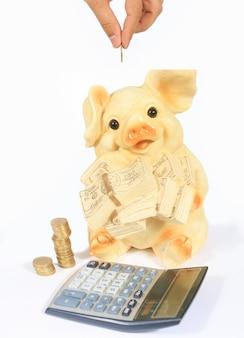 Ð 및 흰색 배경에 고립 된 돼지 저금통에 동전을 넣어. 돈을 절약.
