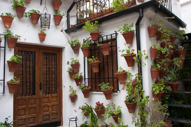 鉢植えや吊り下げ式の植物で飾られたアンダルシアのパティオファサード。コルドバ、アンダルシア、スペイン。