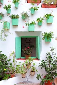 アンダルシアのパティオのファサードには、鉢や吊り下げられた植物で飾られた木製の窓があります。コルドバ、アンダルシア、スペイン。