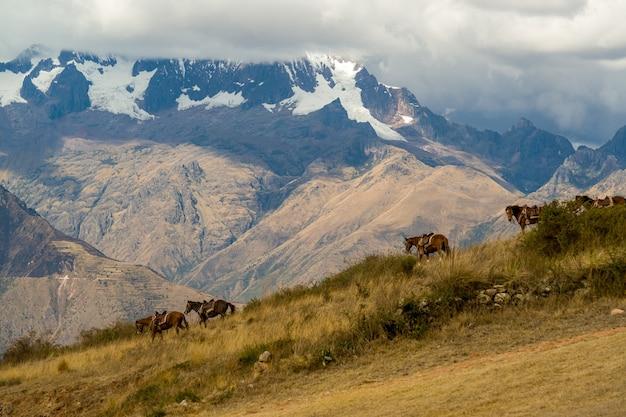 ウツボ考古学センターウルバンバクスコペルー近くのアンデス山脈