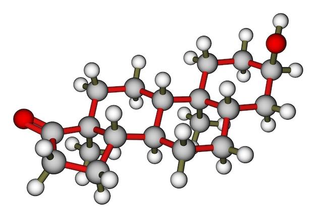 アンドロステロン男性ホルモン分子モデル