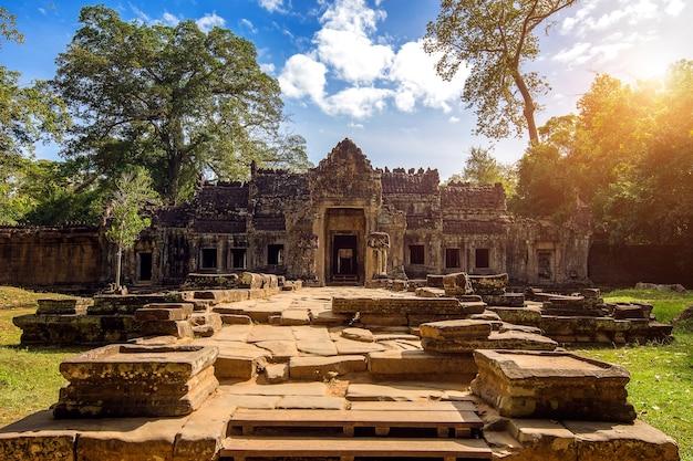 アンコールワット寺院、シェムリアップはカンボジアで刈り取ります。