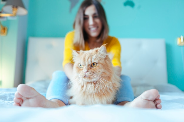 怒っている腹が立つ猫の飼い主に激怒