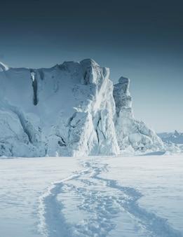 グリーンランド、イルリサットの雪の中の動物の足跡の軌跡