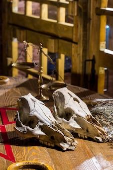 Череп животного на фоне деревянной клетки и старых гирь