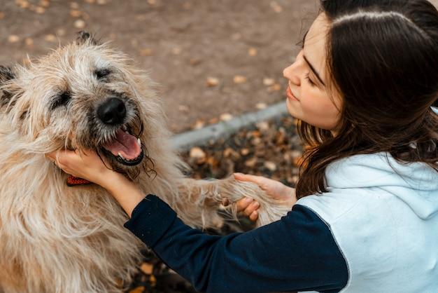 動物の訓練。ボランティアの少女が動物保護施設の犬と一緒に歩きます。秋の公園で犬と少女