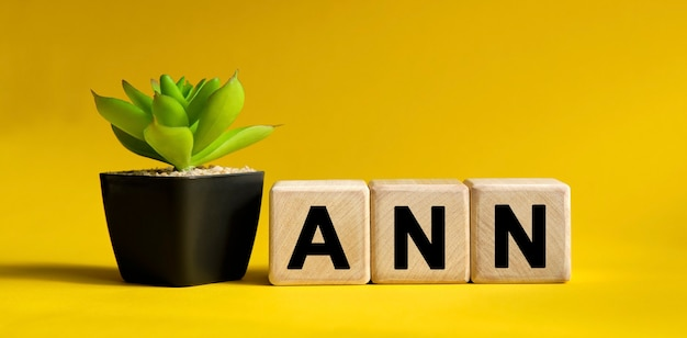 Ann text on a yellow surface. wooden cubes and flower in a pot.