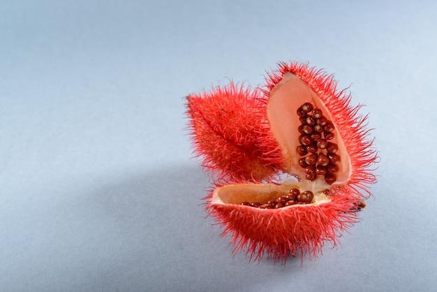 아나토(아나토). 그 씨앗은 자연적인 식용 색소로 사용되며 중립적인 배경을 가진 스튜디오에서 촬영됩니다.