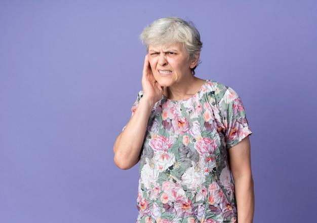 짜증이 노인 여성이 보라색 벽에 고립 된 귀에 손을 넣습니다.