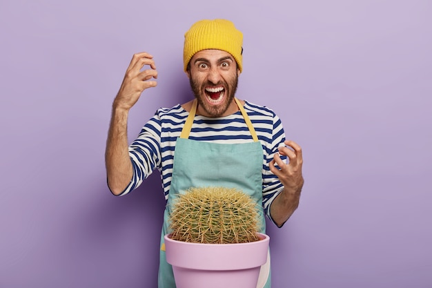 Annoyed man gardener cut finger with cactus thorn, stands near pot, wears casual hat, apron, gestures with anger