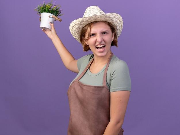 コピースペースと紫色の壁に分離された植木鉢に花を保持している園芸帽子をかぶってイライラする若いスラブ女性庭師