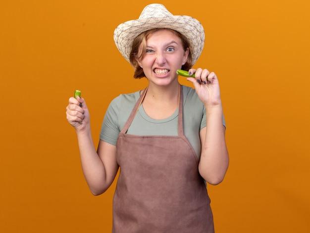Una giovane giardiniera slava infastidita che indossa un cappello da giardinaggio tiene parti di peperoncino rotto