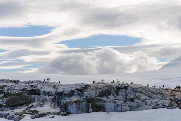 펭귄이 있는 남극 풍경