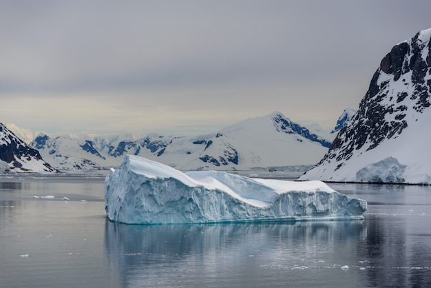 Antarctic seascape with icebergs and reflection