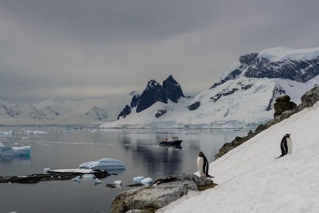 反射と南極の海
