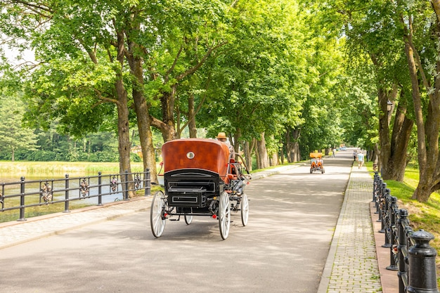 Antique horse drawn cart in a city park.