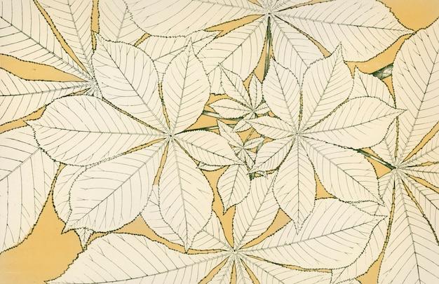 オーエン・ジョーンズの装飾文法のアンティーク・イラスト