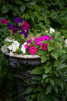 Antique peeling garden vase of flowers in an old park