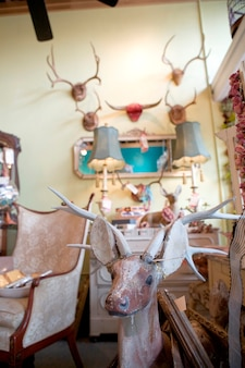 Antique shop with antlers