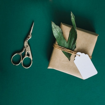 Antique silver scissors; wrapped present with leaves and tag on green background