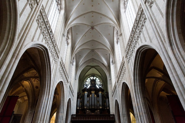 Антверпен, бельгия - 2 октября 2019 года: интерьеры, картины, витражи и детали собора нотр-дам д'анверс в антверпене, фламандский регион, бельгия