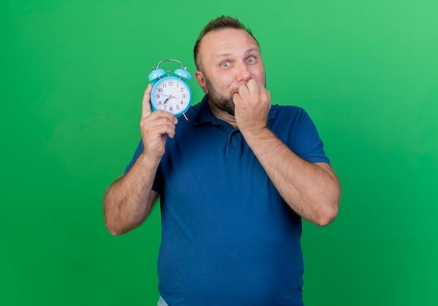 Взволнованный взрослый славянский мужчина держит будильник, кусая пальцы, изолированные на зеленой стене