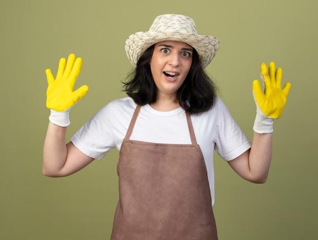 Взволнованная молодая брюнетка женщина-садовник в униформе в садовой шляпе и перчатках стоит с поднятыми руками, изолированными на оливково-зеленой стене