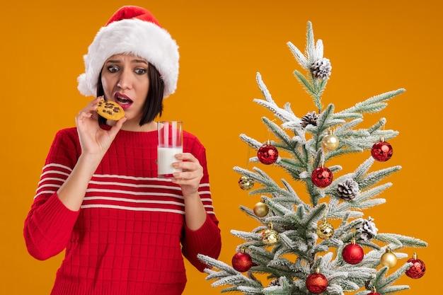 Ragazza ansiosa che indossa il cappello di babbo natale in piedi vicino all'albero di natale decorato che tiene un bicchiere di latte e un biscotto vicino alla bocca guardando in basso isolato su sfondo arancione