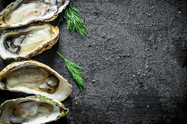 Appetizing raw oysters with dill on rustic table