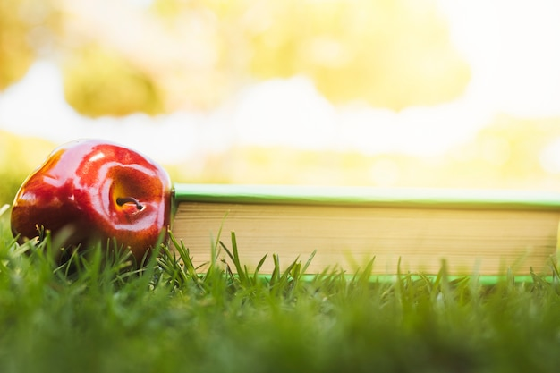 Apple arranged near book on grass
