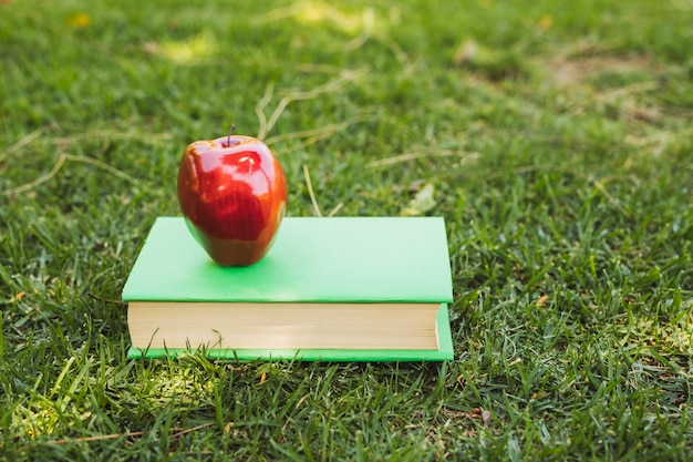 Apple on book arranged on grass