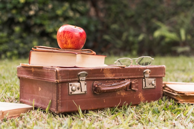 Apple and book on suitcase near glasses