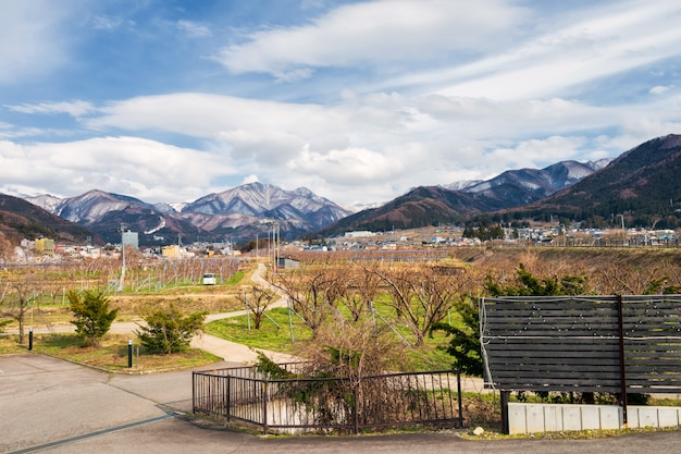 Apple farm with central alps, yamanouchi