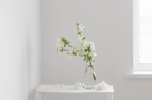 Apple flowers in glass vase in white interior