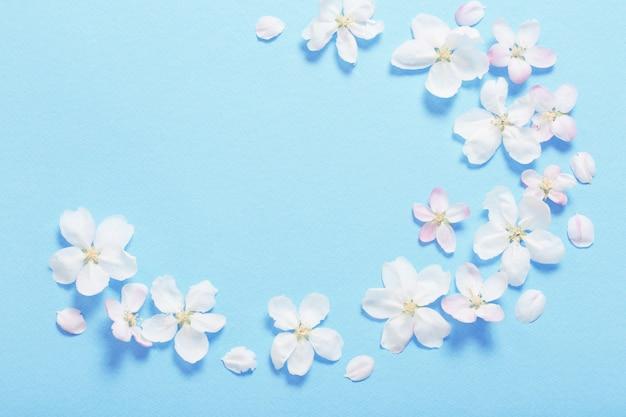 Яблочные цветы на поверхности голубой бумаги