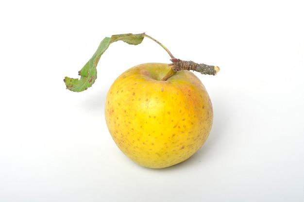 白い背景の上のリンゴ